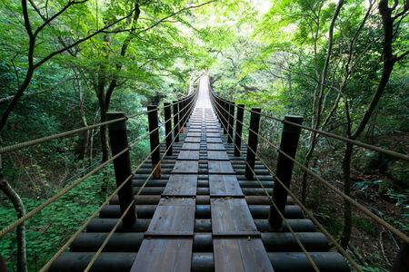 Shiomi Falls Suspension Bridge
