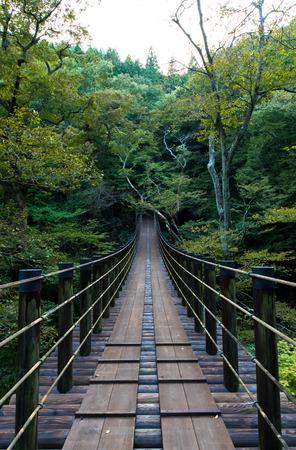 Shiomi Falls Suspension Bridge 免版税图像 - 33826361