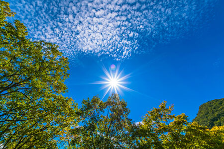 Autumnal blue sky