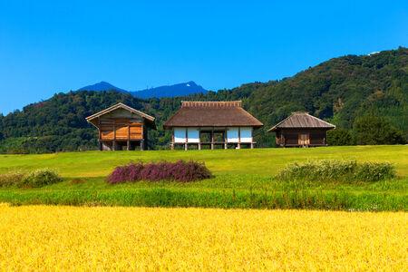 nara park: Hirasawakaga Ruins in Japan