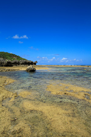 The shore at the time of the ebb tide, Okinawa, Japan