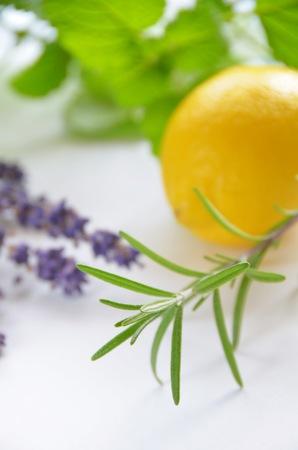 rosemary flower: herb and lemon