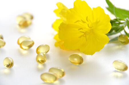 primrose oil: evening primrose and supplement