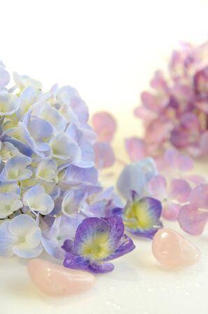 arreglo floral: arreglo de flores de hortensia Foto de archivo