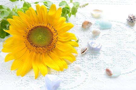 edelstenen: zonnebloem met edelstenen Stockfoto