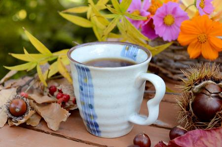 autumn garden: coffee break in autumn garden