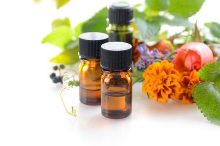 THerische Öle mit pflanzlichen Blüten und Blättern Standard-Bild - 49029813