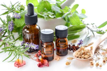 ätherische Öle und Kräuter für natürliche Apothekers Standard-Bild