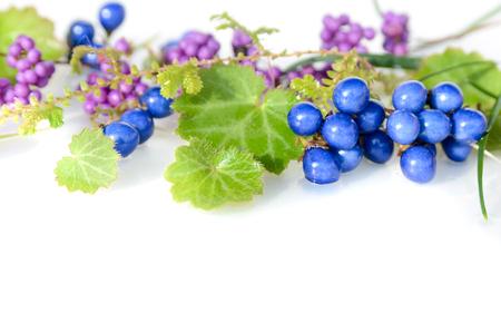 mondo: arrangement of winter wild plants and berries Stock Photo