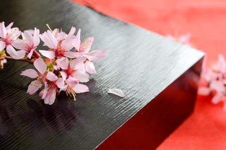 cherry blossom and black box