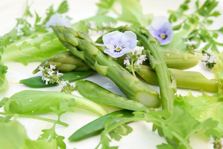green asparagus salad Standard-Bild