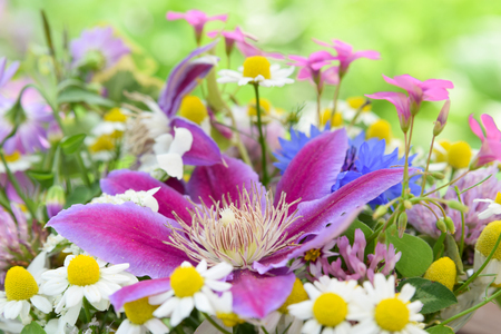flower arrangement of clematis Standard-Bild