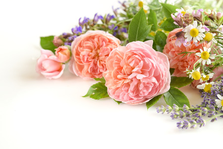 roses with herbs in white background