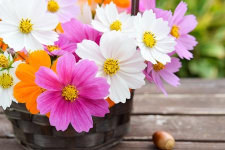 woden: cosmos flowers in basket