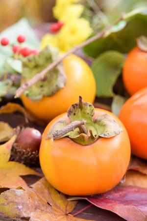 秋の柿果実