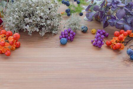 autumn arrangement with wild plants and seeds