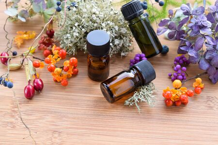 essential oils with autumn plants