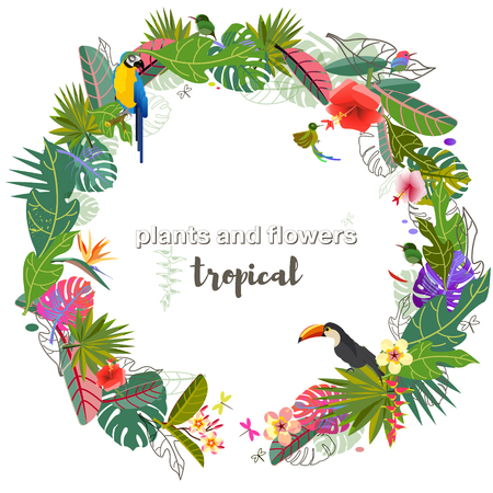 Tropical flowers, leaves. Exotic monster leaf. Caribbean colors. Summer vacation