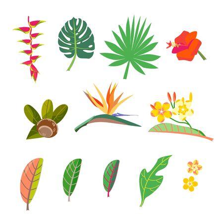 Conjunto tropical. Establecer imágenes vectoriales hojas, flores. Estilización jardinería caribeña Ilustración de vector