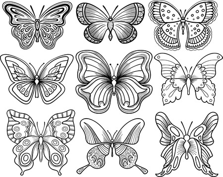 butterfly: Hand drawing butterfly vector clipart black outline Illustration