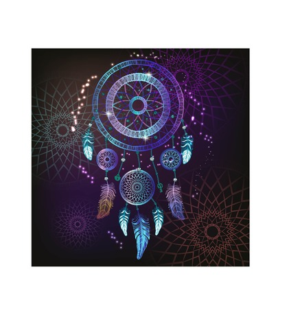 Dream catcher with feathers. Hand drawing Vector.  イラスト・ベクター素材