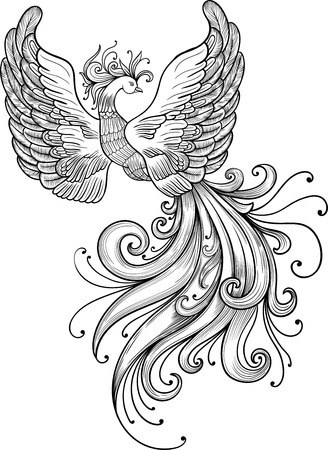 mythical phoenix bird: Firebird vector clipart. Black contour on a white background