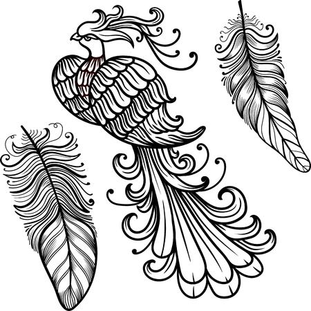 mythical phoenix bird: Firebird vector clipart. Black contour on a white background. Boho chic, coloring page, zentangle art New Year fire cock Illustration