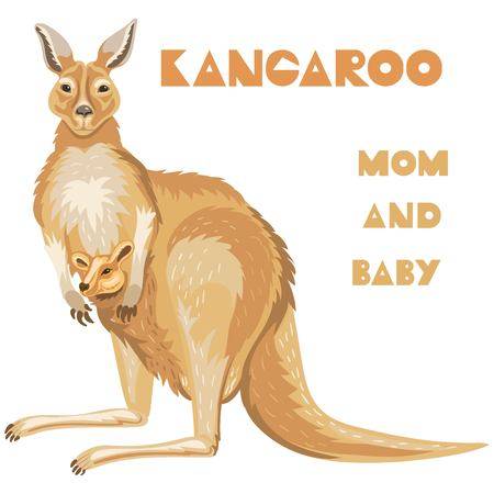 Vector realistic illustration of a cute mom kangaroo with a little baby in pocket. Good for a family brand of clothes for moms with bsby. Mothers Day postccsrd.