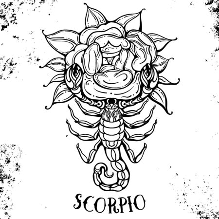 Beautiful line art filigree zodiac symbol. Black sign on vintage background.Elegant jewelry tattoo.Engraved horoscope symbol for coloring book. Doodle mystic drawing with calligraphy lettering.Scorpio Иллюстрация