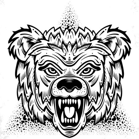 Hand drawn vector roaring bear. T-shirt design. Wild grizzly, angry animal head illustration