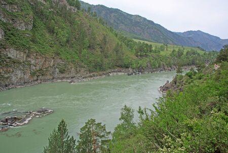 katun: SIBERIA, RUSSIA - JUNE 11, 2012: Mountain river Katun, Altai mountains, Russia