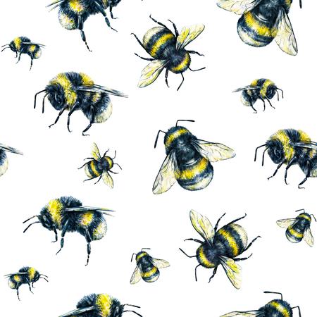 흰색 배경에 꿀벌입니다. 수채화 드로잉입니다. 곤충 예술입니다. 세공. 원활한 패턴 스톡 콘텐츠