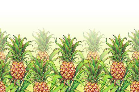 trabajo manual: Piña con las hojas verdes fruta tropical que crece en una granja. marcadores de dibujo piña patrón transparente marco de borde. Ejemplo de color para el diseño. Trabajo manual