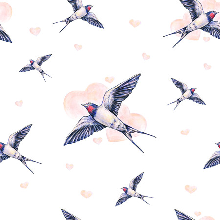 白地に美しいツバメ。水彩イラスト。春の鳥は、愛をもたらします。手仕事。シームレス パターン