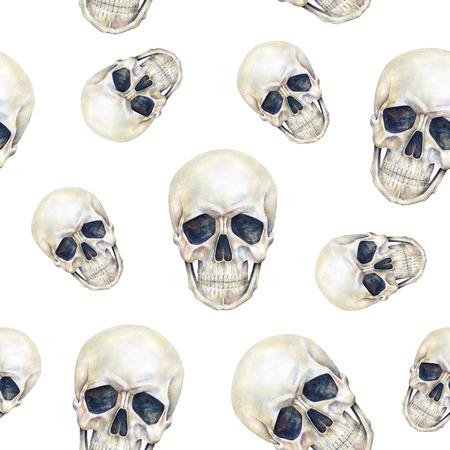 trabajo manual: Cráneos persona humana está aislado en un fondo blanco. Gráfico de la acuarela. Cráneo trabajo hecho a mano arte de la ilustración. Patrón sin fisuras con los cráneos de impresión