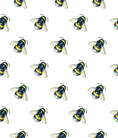 trabajo manual: Abejorro en un fondo blanco. Gráfico de la acuarela. arte insectos. Trabajo manual. patrón sin fisuras Foto de archivo