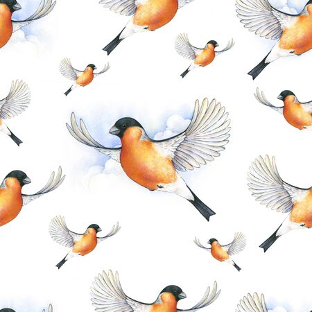 grey pattern: Watercolor bullfinch. bird in flight handwork drawing. Christmas symbol. Beautiful winter bird with grey and pinkish plumage soaring in clouds. Handwork. Seamless pattern