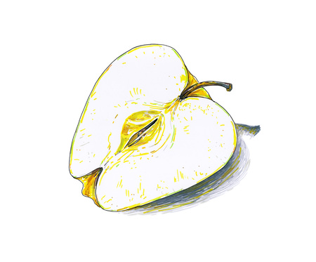 Yellow apple fruit are isolated on a white background. Color sketch felt-tip pens. Healthy food. Handwork. Fast schematic drawing Stock Photo
