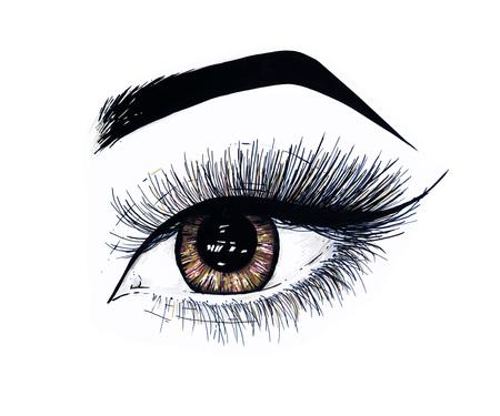 trabajo manual: El ojo femenino abierto hermoso con las pestañas largas se aísla en un fondo blanco. Ilustración de la plantilla de maquillaje. Rotuladores de dibujo a color. Trabajo manual. Dibujo esquemático rápido