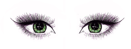 Beautiful open female eyes with long eyelashes is isolated on a white background. Makeup template illustration. Color sketch felt-tip pens. Handwork. Fast schematic drawing Stock Photo