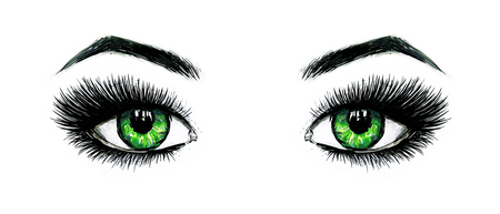 Beautiful open female green eyes with long eyelashes is isolated on a white background. Makeup template illustration. Color sketch felt-tip pens. Handwork. Fast schematic drawing Stock Photo