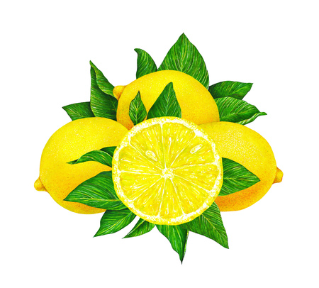 Great illustration of beautiful yellow lemon fruit with green leaves isolated on white background. Watercolor drawing by hand Stock Photo