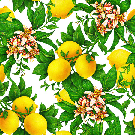Yellow lemon fruits on a branch with green leaves and flowers isolated on white background. Watercolor drawing seamless pattern for design