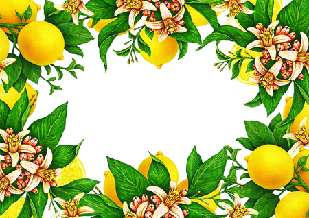 Horizontal template for a festive wedding card. Fruit motives for design handwork. Yellow lemons with flowers and leaf in the form of a frame