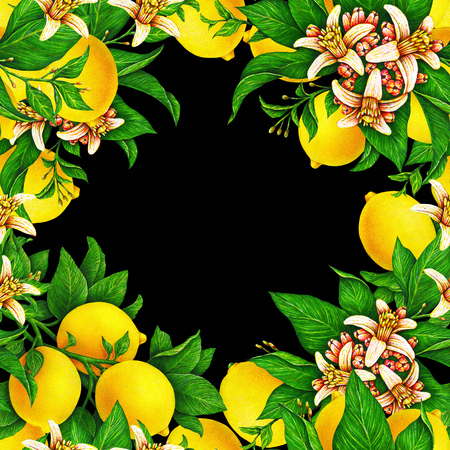 Seamless template for a festive wedding card. Fruit motives for design handwork. Yellow lemons with flowers and leaf in the form of a square frame on a black background Stock Photo