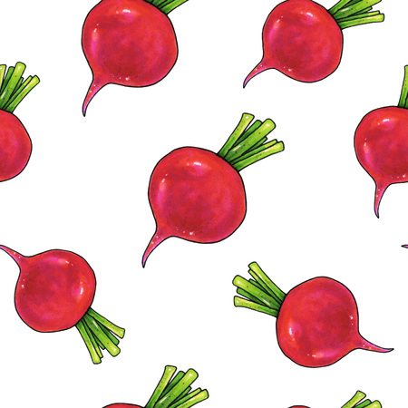 Radish on a white background. Color drawing markers. Agricultural vegetable. Seamless pattern