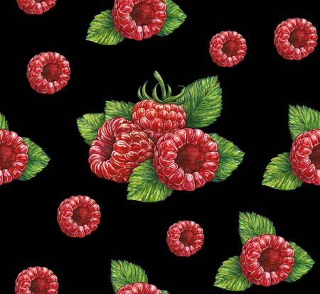 Forest raspberry isolated on black background. Watercolor drawing. Handwork. Seamless pattern for design