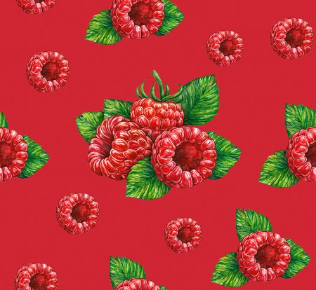 Forest raspberry isolated on red background. Watercolor drawing. Handwork. Seamless pattern for design