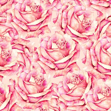 Pink rose flowers seamless pattern in romantic style for design of fabrics. Watercolor handwork illustration. Drawing of blooming rose