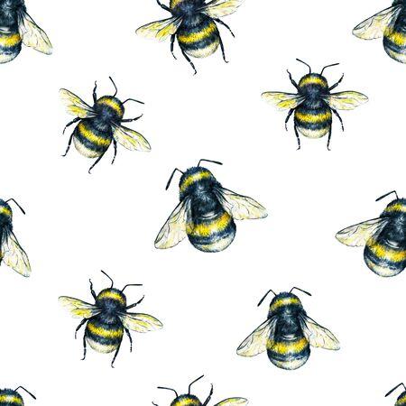 Hummel auf weißem Hintergrund. Aquarellzeichnung. Insekten Kunst. Handarbeit. Nahtloses Muster